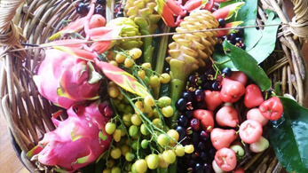 A beautiful basket full of fresh tropical fruit picked from our orchard.